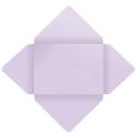 See a larger version of this thumbnail of Stardream Kunzite Envelopefolds