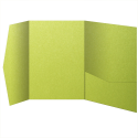 See a larger version of this thumbnail of So...Silk Shocking Green