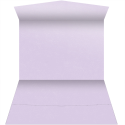 See a larger version of this thumbnail of Stardream Kunzite PocketFolds