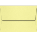 An image of Sorbet Yellow
